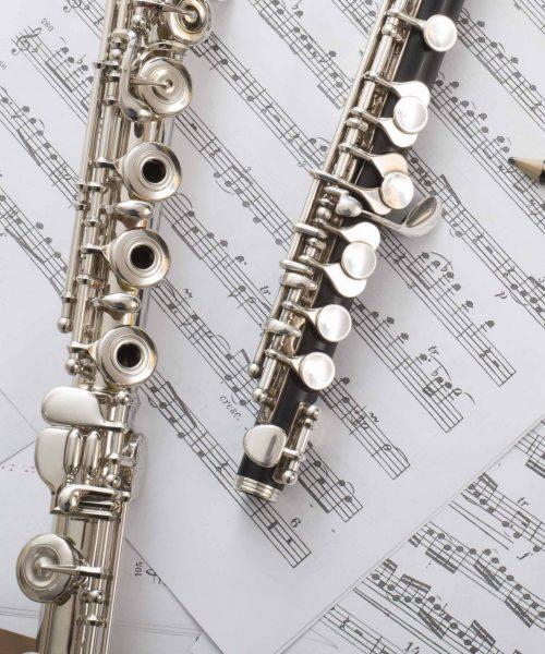 flauta- flautin recortada